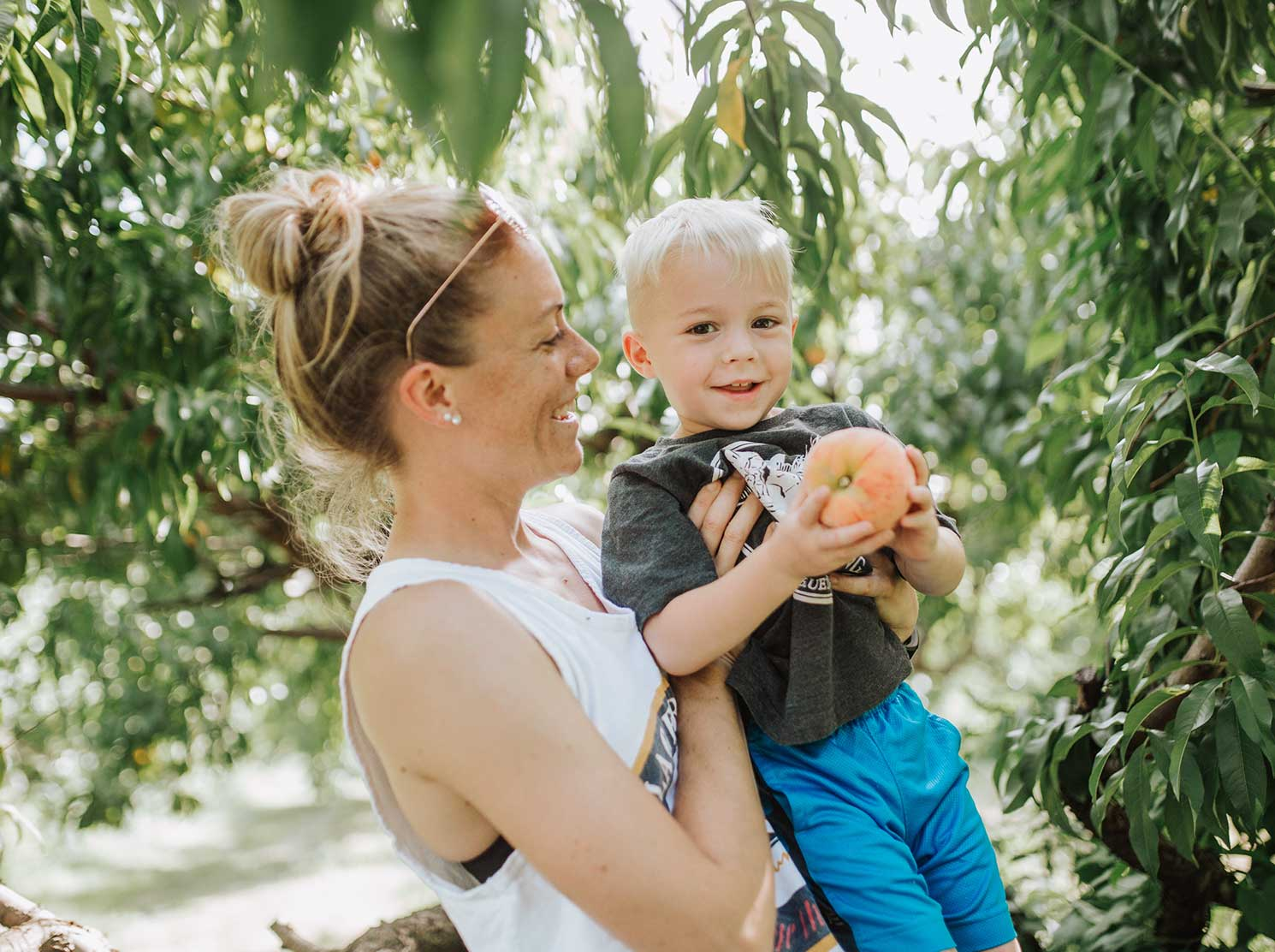 Mom helping son pick fruit from tree